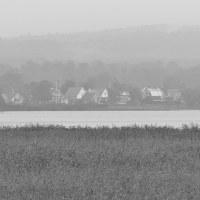 146 Höstgrått/Autumn gray (322/365)