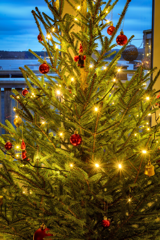 365 329 The Lost Art Of Keeping A Secret: 174 Julstämning/Christmas Spirit (329/365)