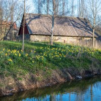 Eget tema 9 - April (134/365)