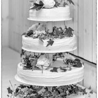 31 Bröllopstårta (233/365)