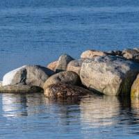 301 Stenar vid havet (62/365+1)