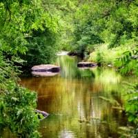 Eget tema 12 - Stilla flyter ån (207/365+1)