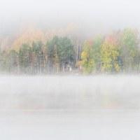 Eget tema 44 - När dimman lättar (351/365+1)