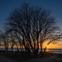 36 Dagens slut (90/365)